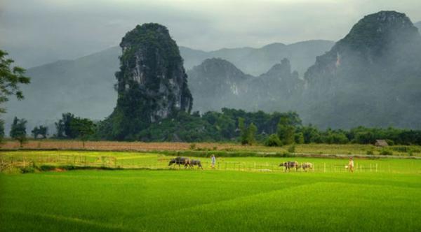 Ngoc Son – Ngo Luong – Pu luong treck 2 Days / 1 Night