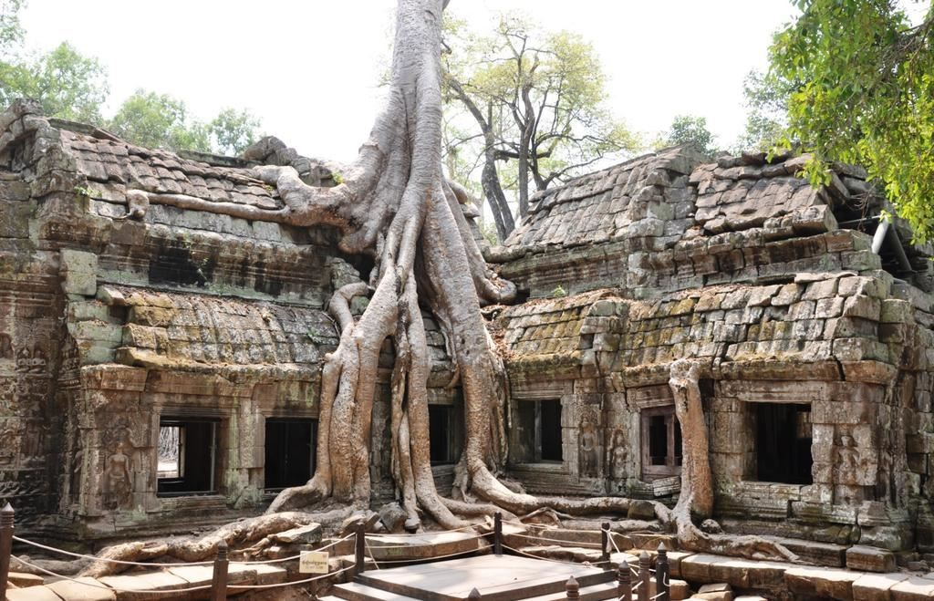 Ta-Prohm-Temple