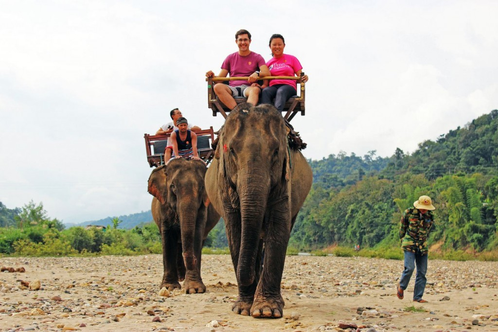elephant-riding-in-laos