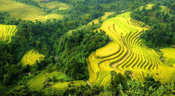 Ha Giang Vietnam, Ha Giang tours, Ha Giang Travel Guide