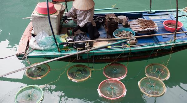 Bai Tu Long Junk – Halong Bay 2 Days/ 1 Night
