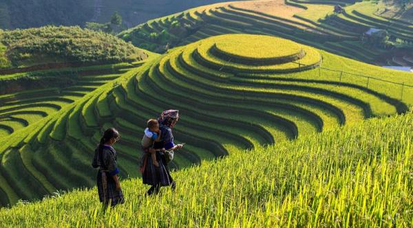 Sapa, Fansipan, sapa tours, travel with Green Discovery Indochina