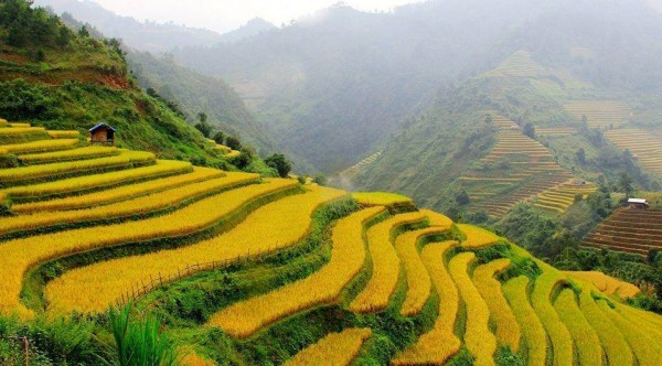 Discover The World Heritage Roads Of Vietnam & Cambodia – 16 Days /15 Nights